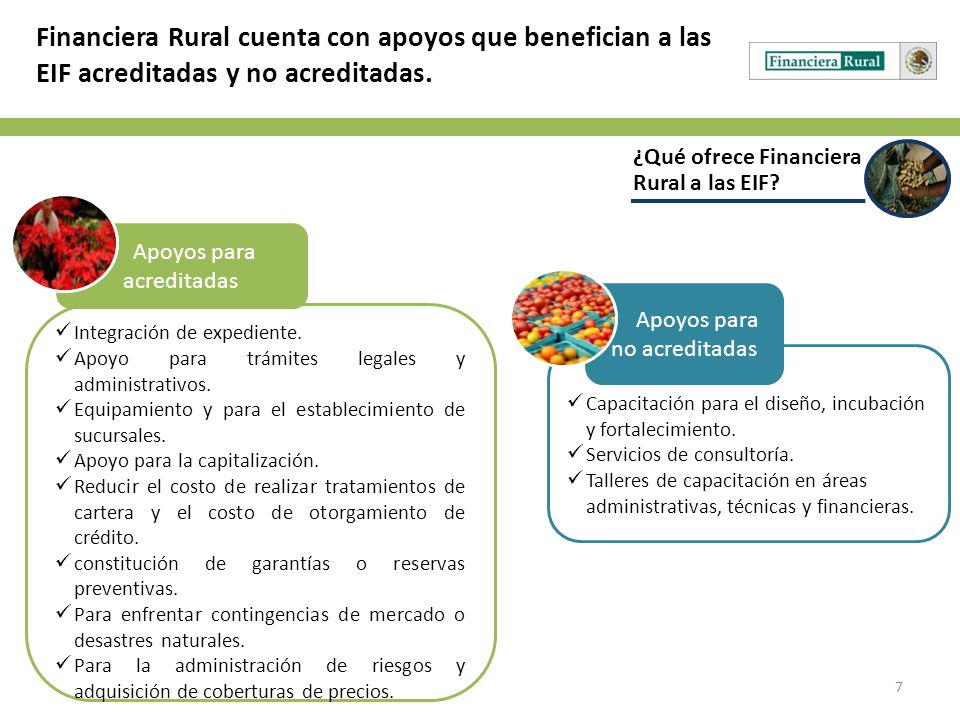 Financiera Rural cuenta con apoyos que benefician a las EIF acreditadas y no acreditadas.