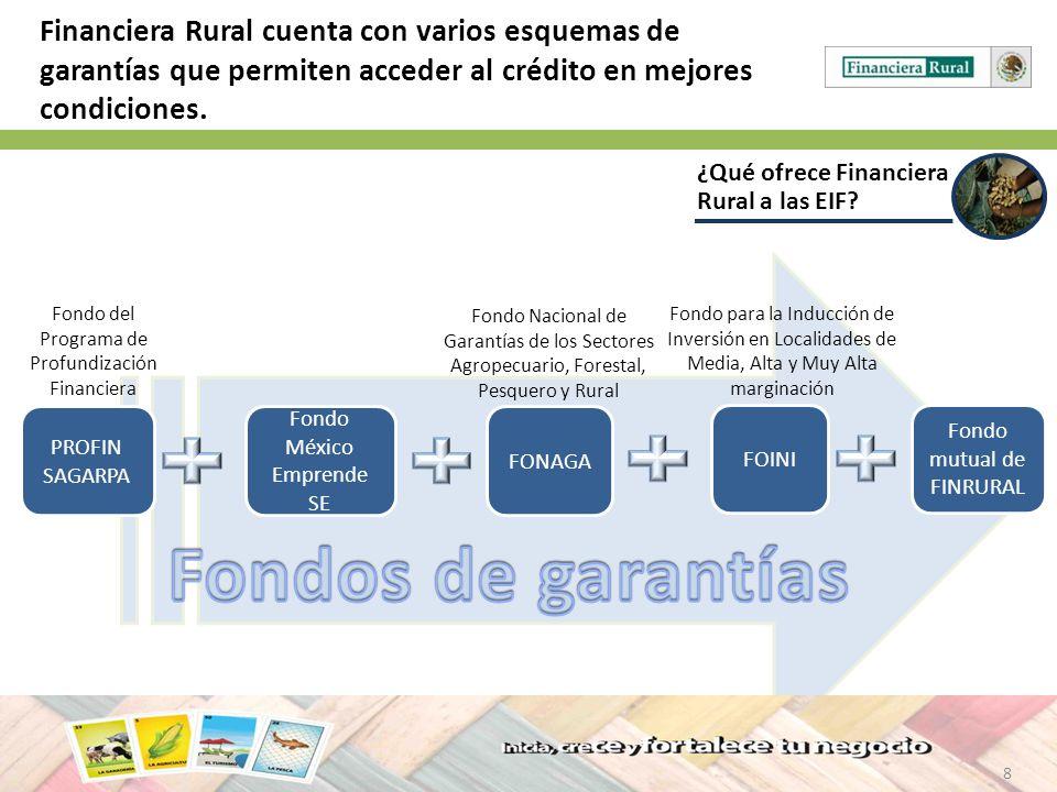Financiera Rural cuenta con varios esquemas de garantías que permiten acceder al crédito en mejores condiciones.