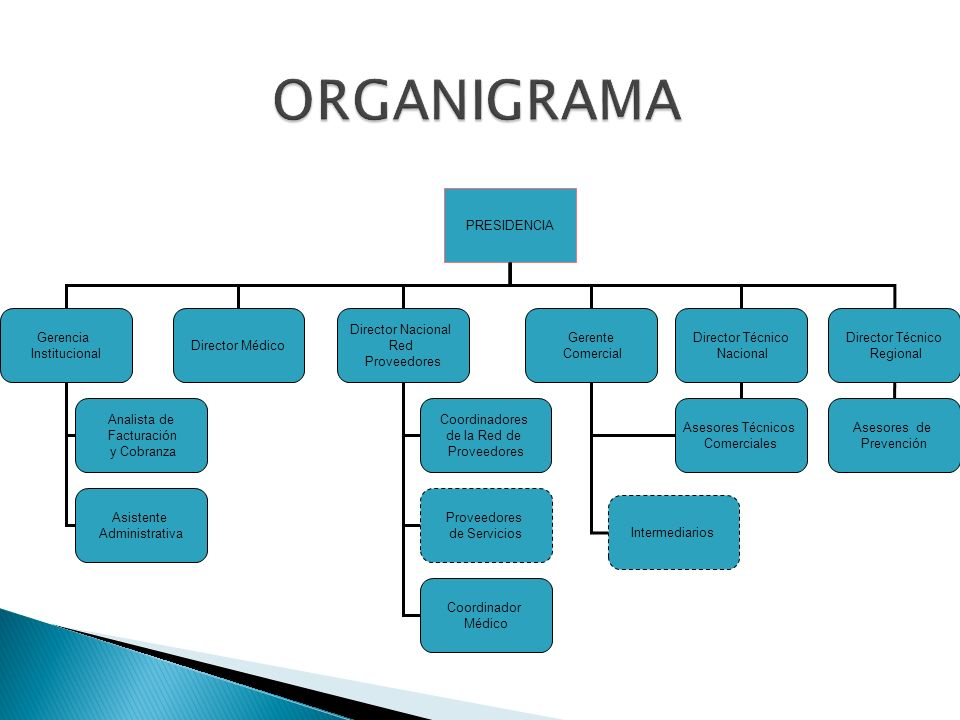ORGANIGRAMA PRESIDENCIA Gerencia Institucional Director Técnico