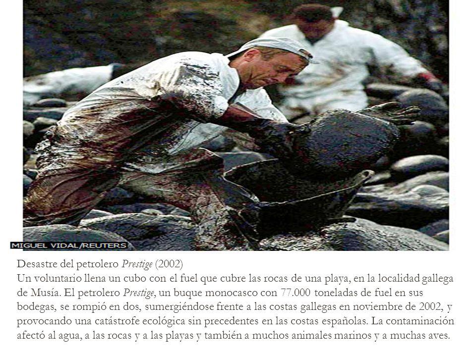 Desastre del petrolero Prestige (2002)