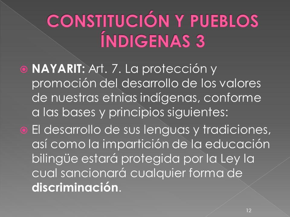 CONSTITUCIÓN Y PUEBLOS ÍNDIGENAS 3