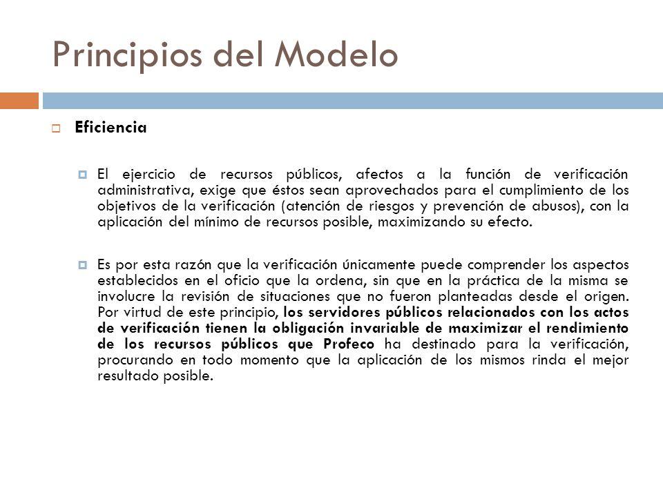 Principios del Modelo Eficiencia