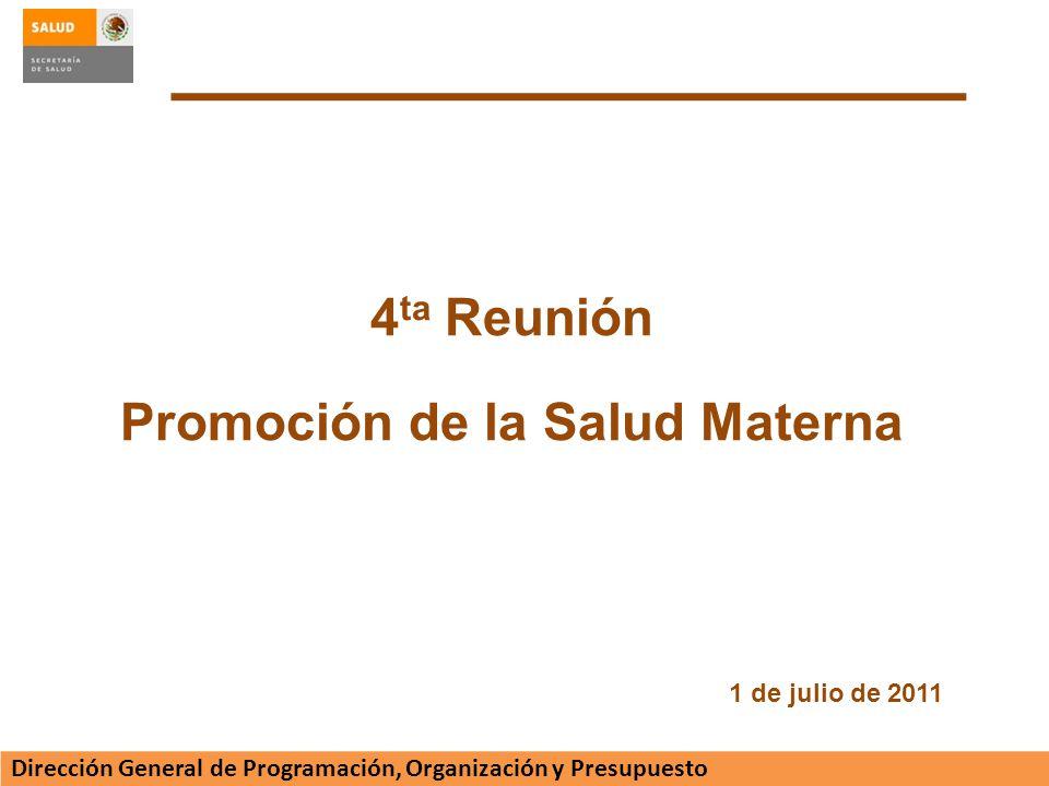Promoción de la Salud Materna