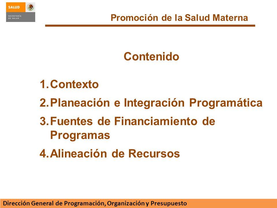 Planeación e Integración Programática
