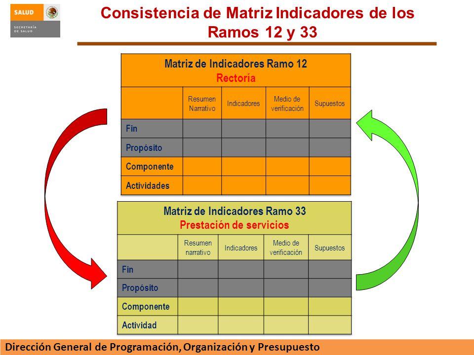 Consistencia de Matriz Indicadores de los Ramos 12 y 33