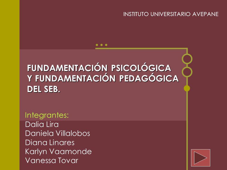 FUNDAMENTACIÓN PSICOLÓGICA Y FUNDAMENTACIÓN PEDAGÓGICA DEL SEB.