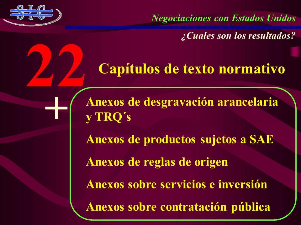 22 + Capítulos de texto normativo