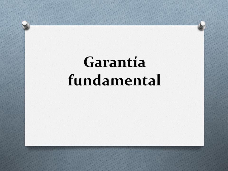 Garantía fundamental