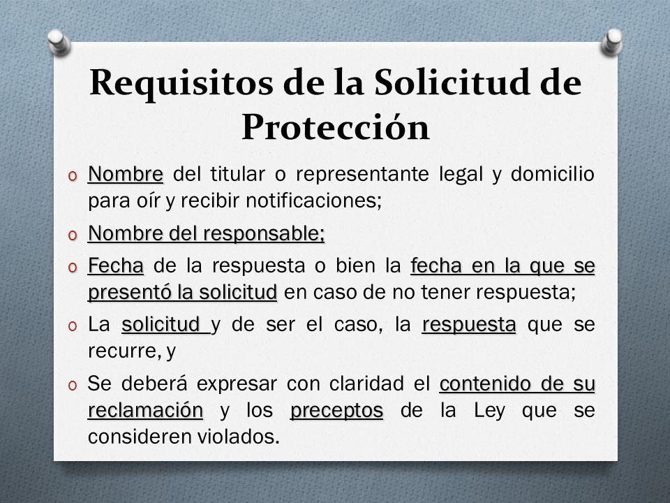 Requisitos de la Solicitud de Protección