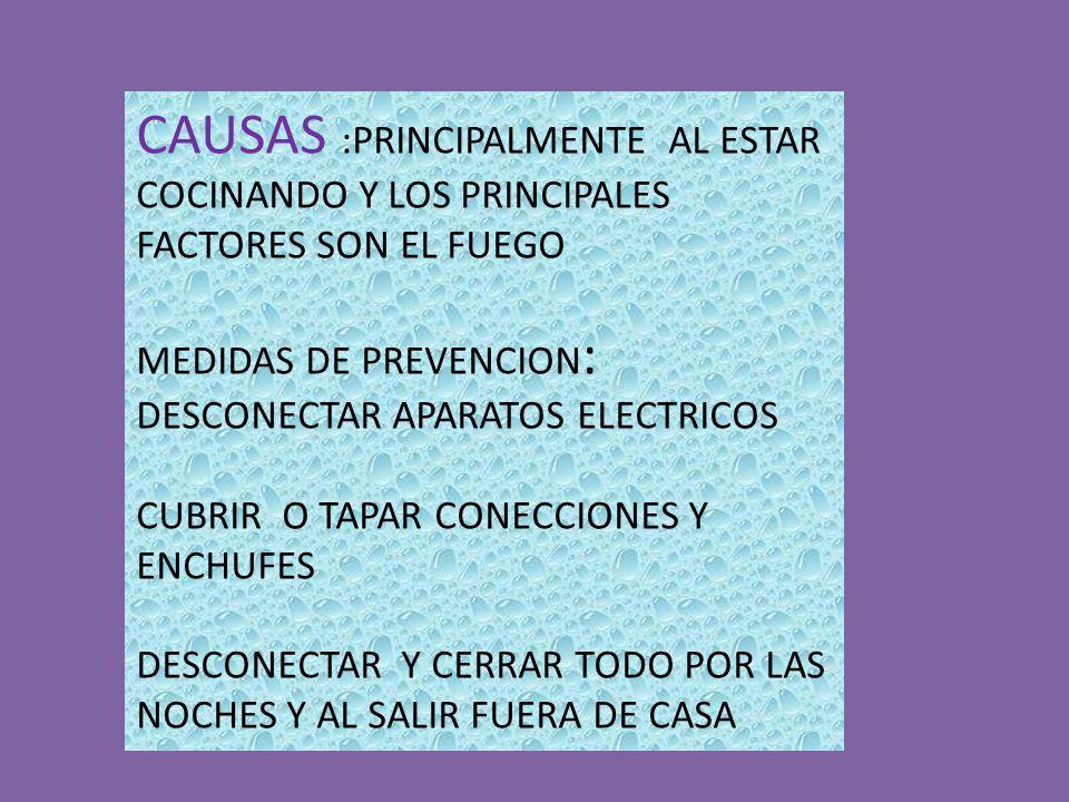 CAUSAS :PRINCIPALMENTE AL ESTAR COCINANDO Y LOS PRINCIPALES FACTORES SON EL FUEGO