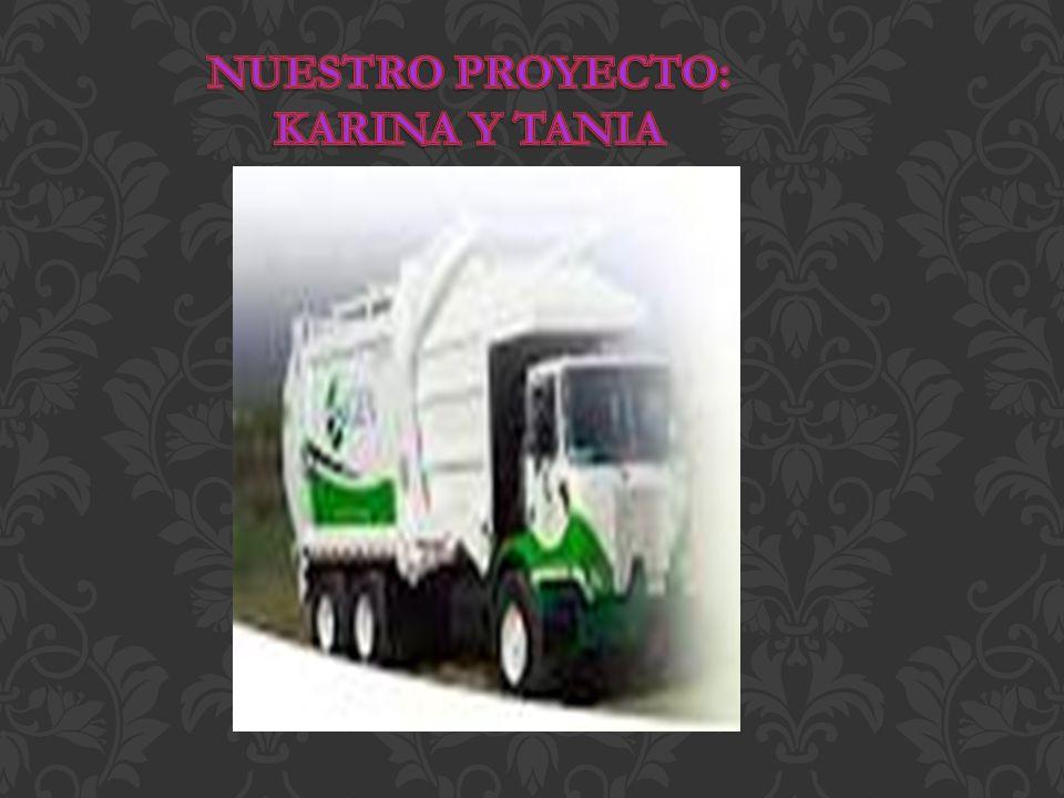 NUESTRO PROYECTO: KARINA Y TANIA