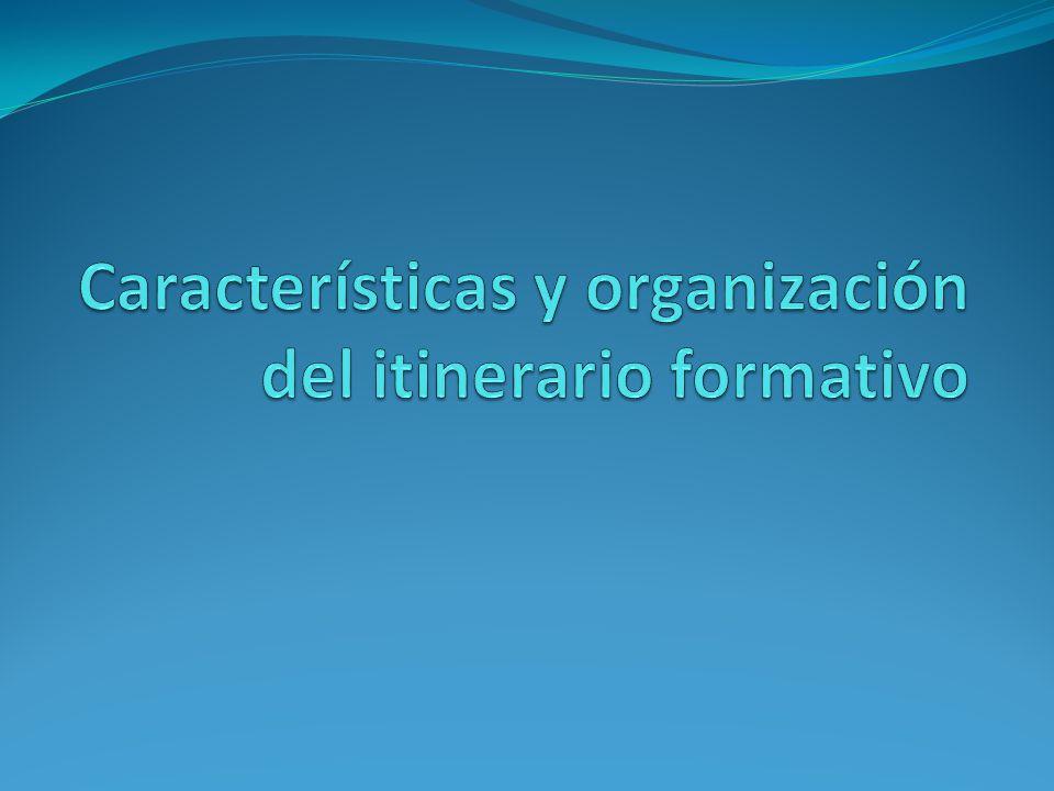 Características y organización del itinerario formativo