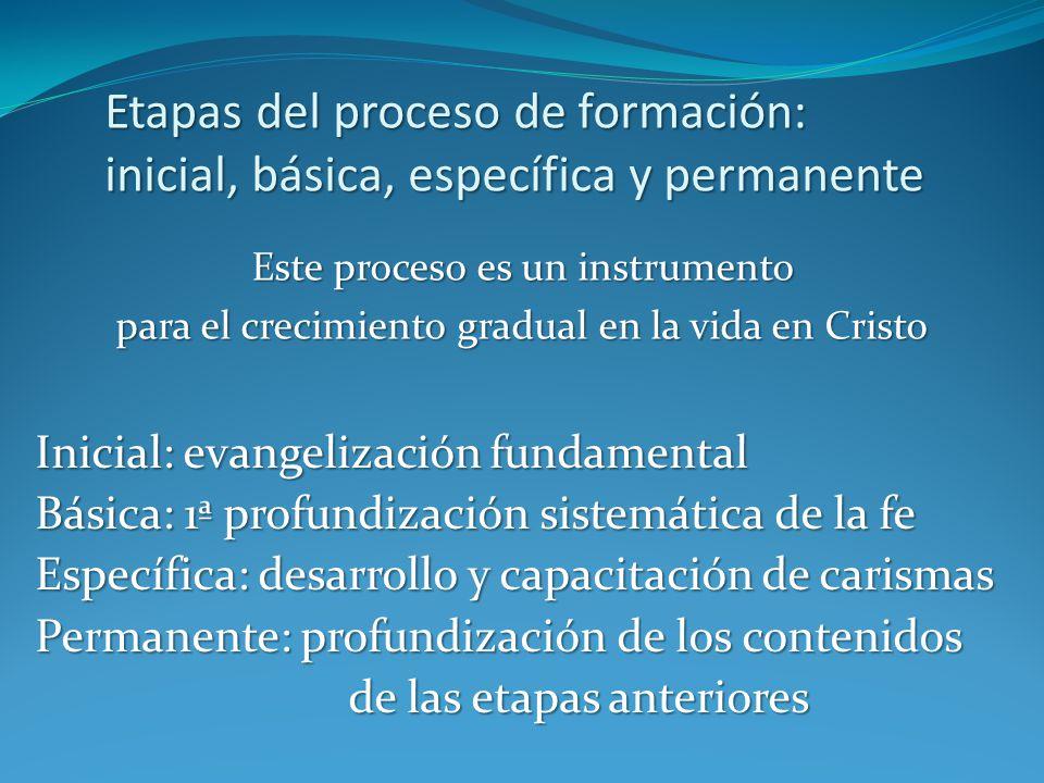 Etapas del proceso de formación: inicial, básica, específica y permanente