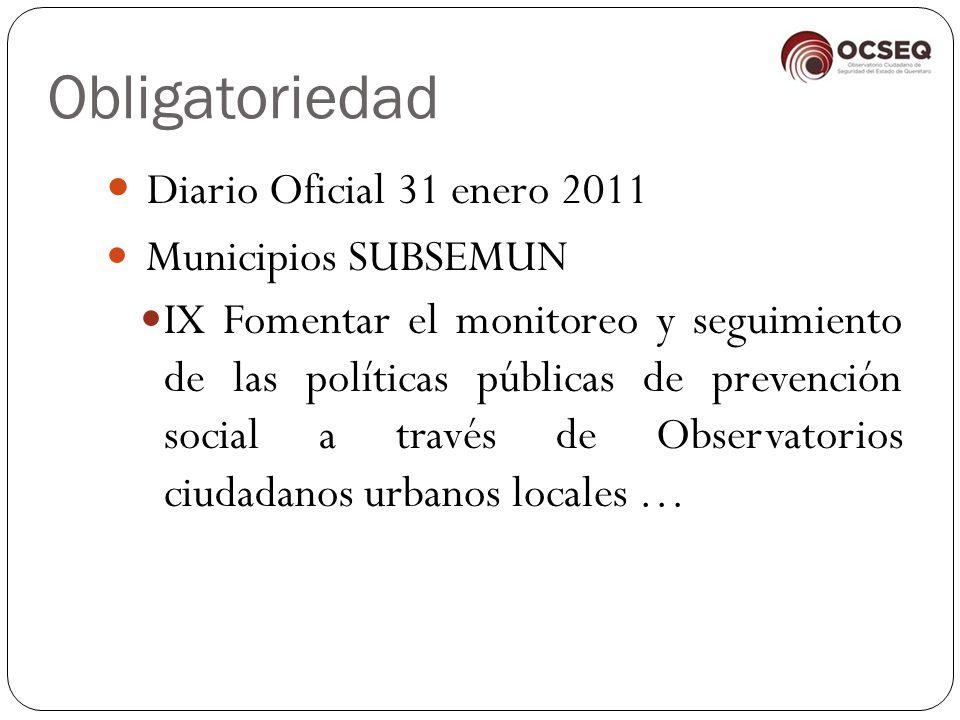 Obligatoriedad Diario Oficial 31 enero 2011 Municipios SUBSEMUN