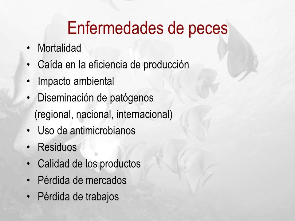 Enfermedades de peces Mortalidad Caída en la eficiencia de producción
