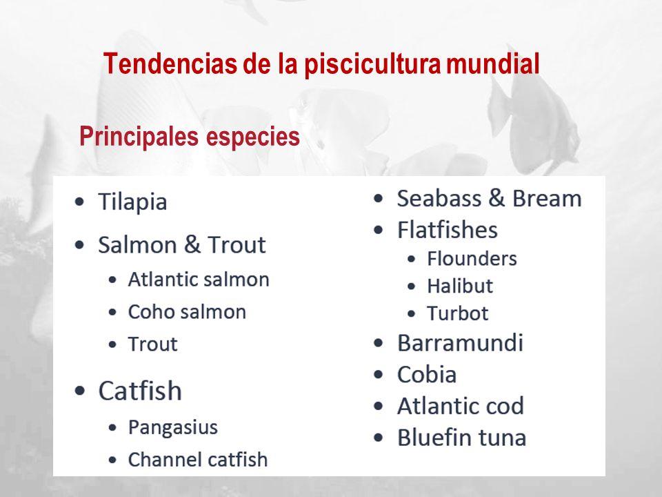 Tendencias de la piscicultura mundial