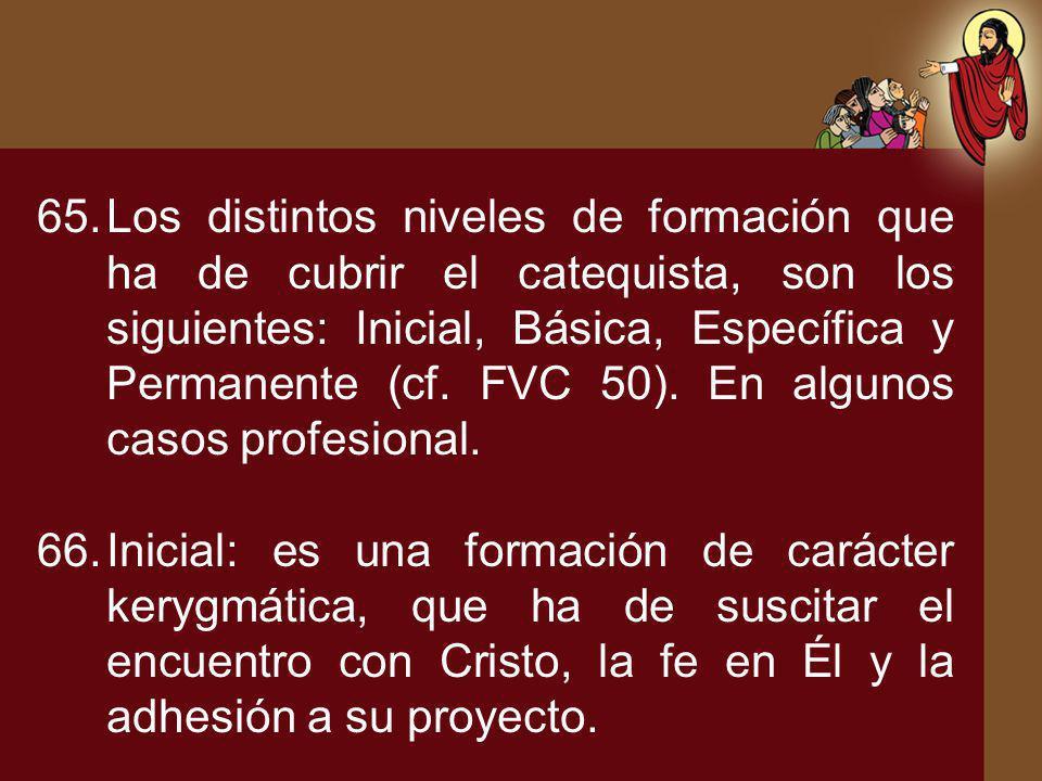 Los distintos niveles de formación que ha de cubrir el catequista, son los siguientes: Inicial, Básica, Específica y Permanente (cf. FVC 50). En algunos casos profesional.
