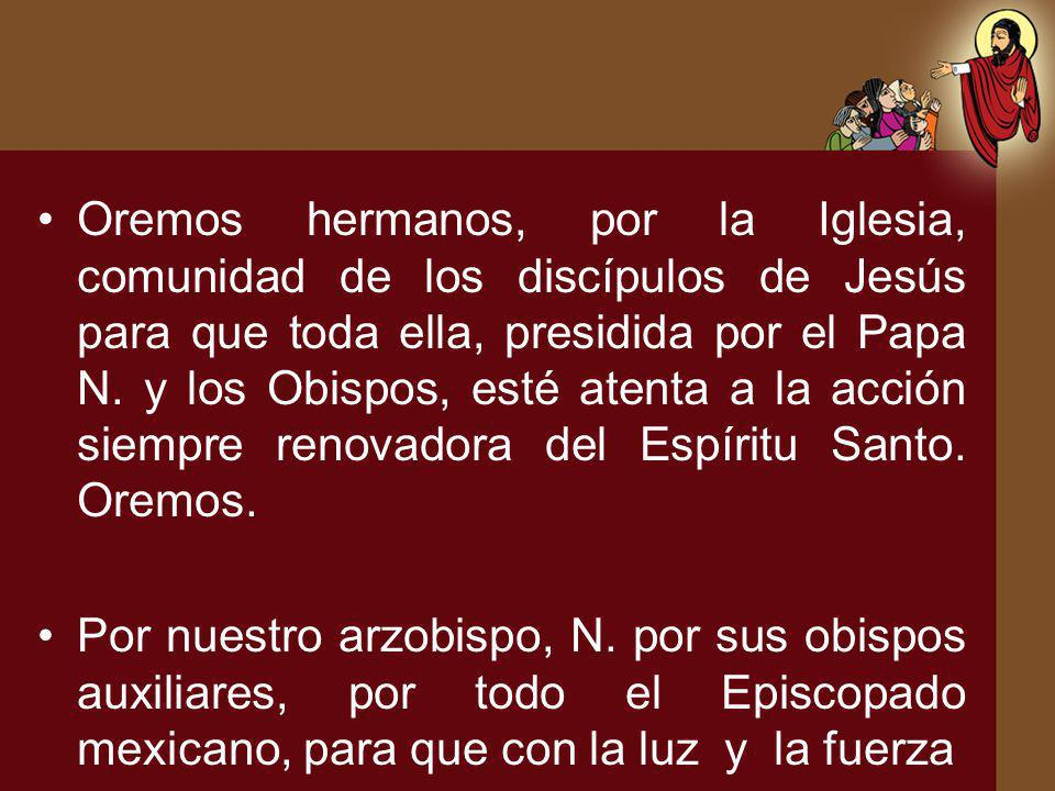 Oremos hermanos, por la Iglesia, comunidad de los discípulos de Jesús para que toda ella, presidida por el Papa N. y los Obispos, esté atenta a la acción siempre renovadora del Espíritu Santo. Oremos.