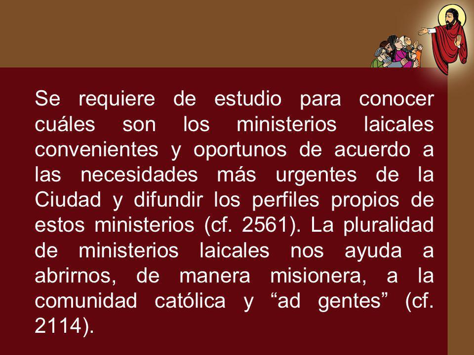 Se requiere de estudio para conocer cuáles son los ministerios laicales convenientes y oportunos de acuerdo a las necesidades más urgentes de la Ciudad y difundir los perfiles propios de estos ministerios (cf.