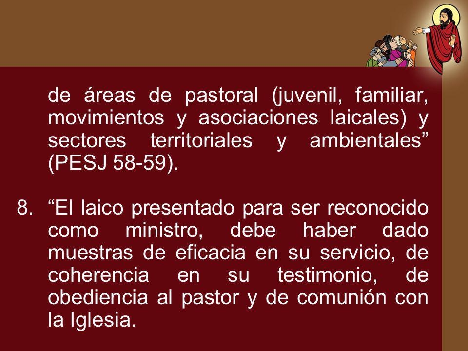 de áreas de pastoral (juvenil, familiar, movimientos y asociaciones laicales) y sectores territoriales y ambientales (PESJ 58-59).