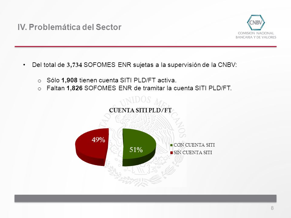 IV. Problemática del Sector