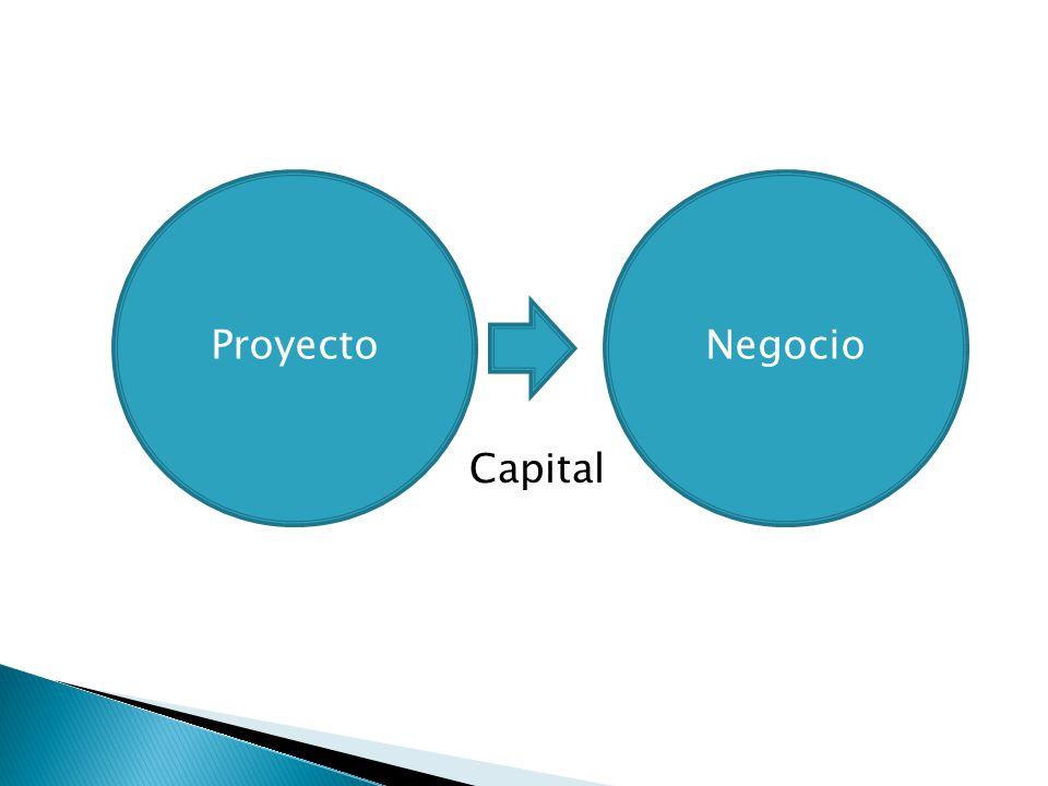 Proyecto Negocio Capital
