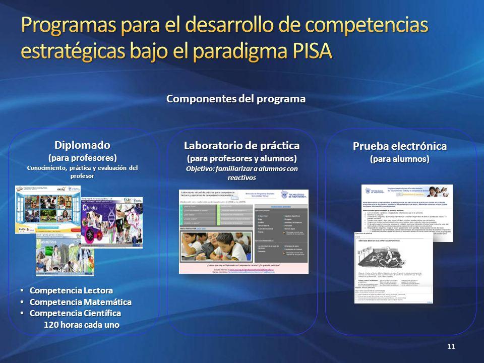 Programas para el desarrollo de competencias estratégicas bajo el paradigma PISA
