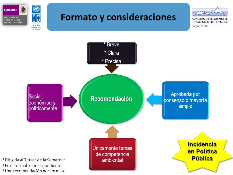 Formato y consideraciones Incidencia en Política Pública