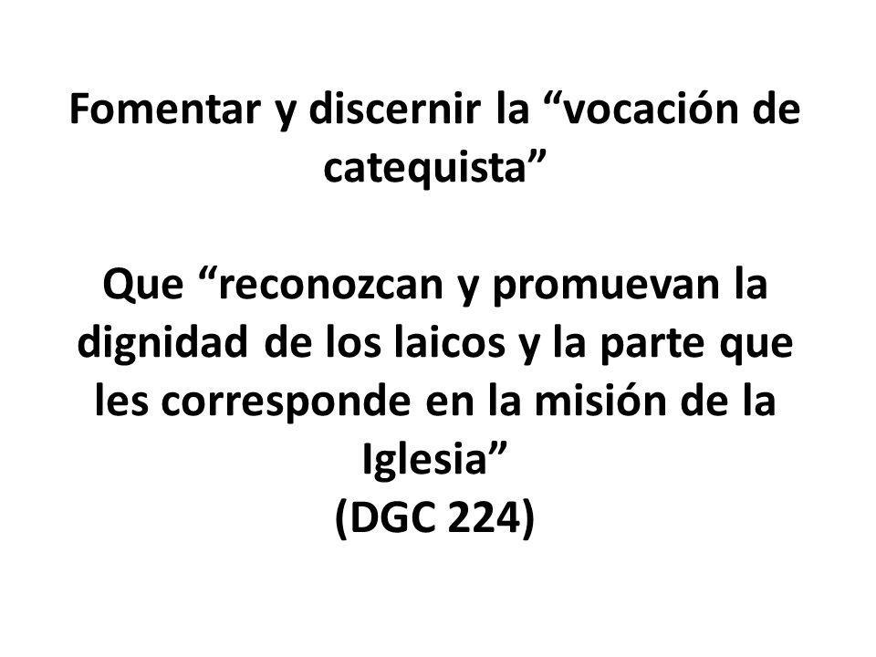 Fomentar y discernir la vocación de catequista Que reconozcan y promuevan la dignidad de los laicos y la parte que les corresponde en la misión de la Iglesia (DGC 224)