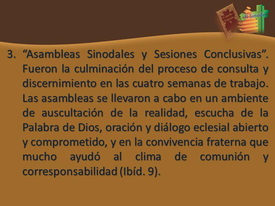 Asambleas Sinodales y Sesiones Conclusivas