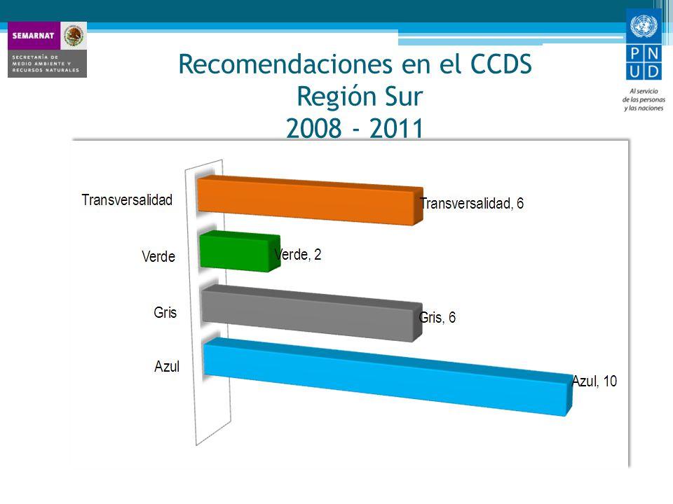 Recomendaciones en el CCDS Región Sur 2008 - 2011
