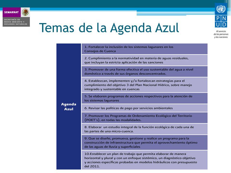 Temas de la Agenda Azul