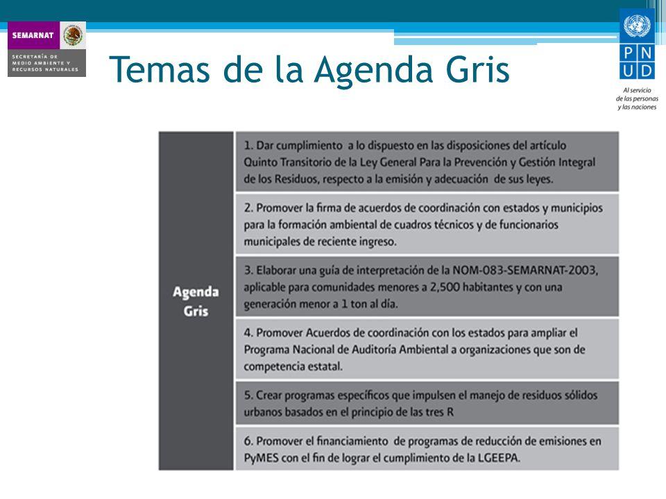 Temas de la Agenda Gris