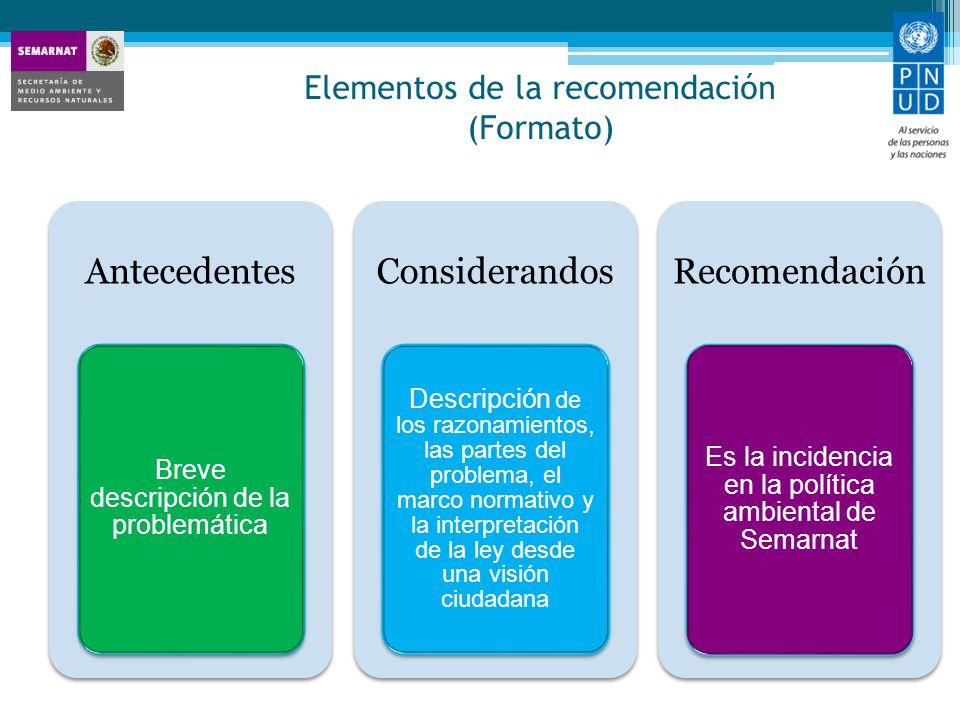 Elementos de la recomendación (Formato)