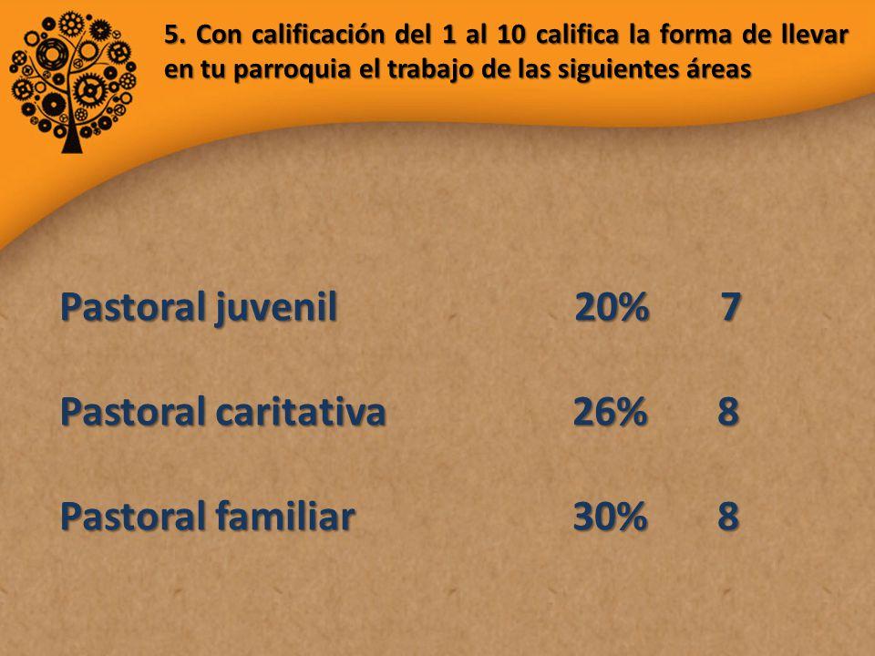 Pastoral juvenil 20% 7 Pastoral caritativa 26% 8