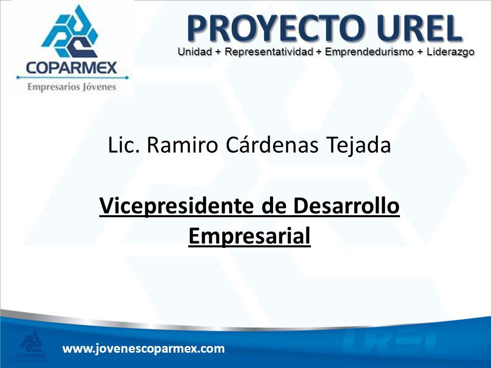 Vicepresidente de Desarrollo Empresarial
