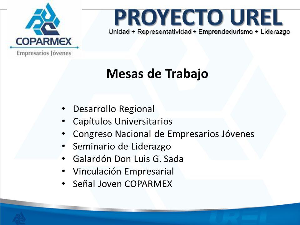 Proyecto UREL Mesas de Trabajo Desarrollo Regional