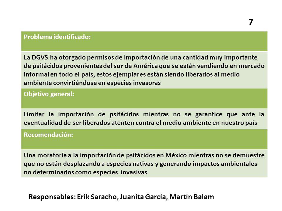 7 Responsables: Erik Saracho, Juanita García, Martín Balam