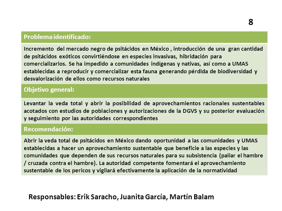 8 Responsables: Erik Saracho, Juanita García, Martín Balam