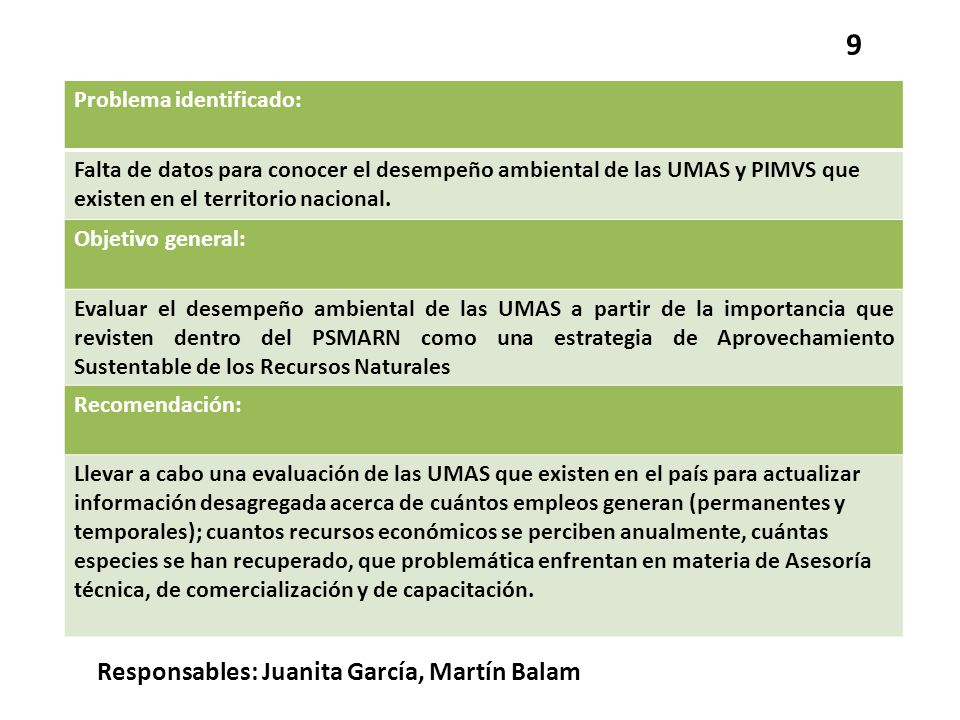 9 Responsables: Juanita García, Martín Balam Problema identificado: