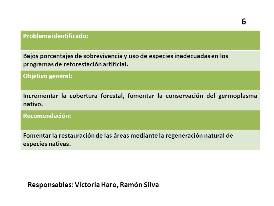 6 Responsables: Victoria Haro, Ramón Silva Problema identificado: