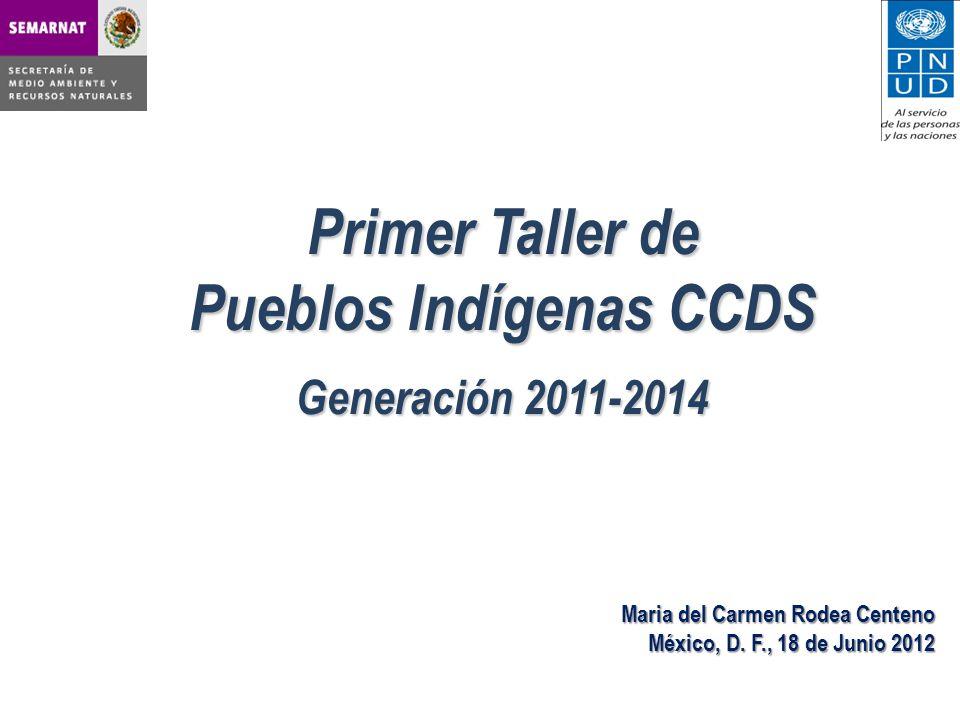 Pueblos Indígenas CCDS