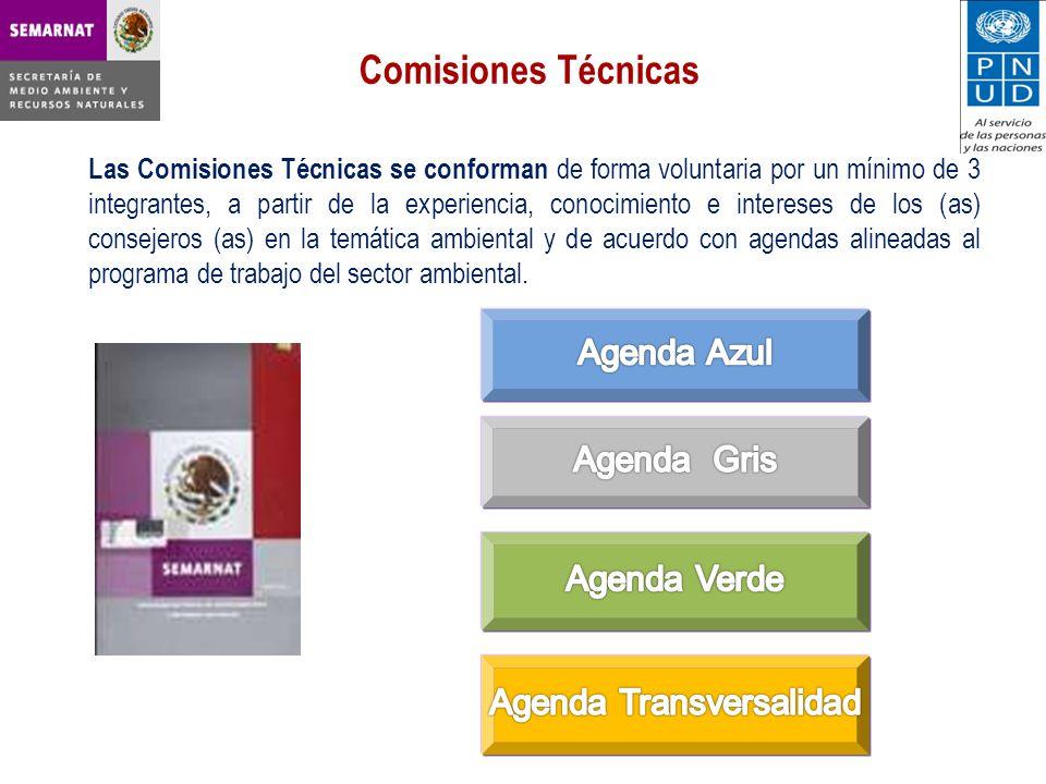 Agenda Transversalidad