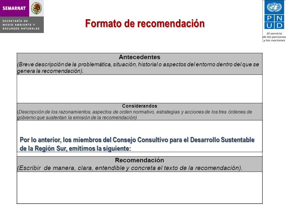 Formato de recomendación