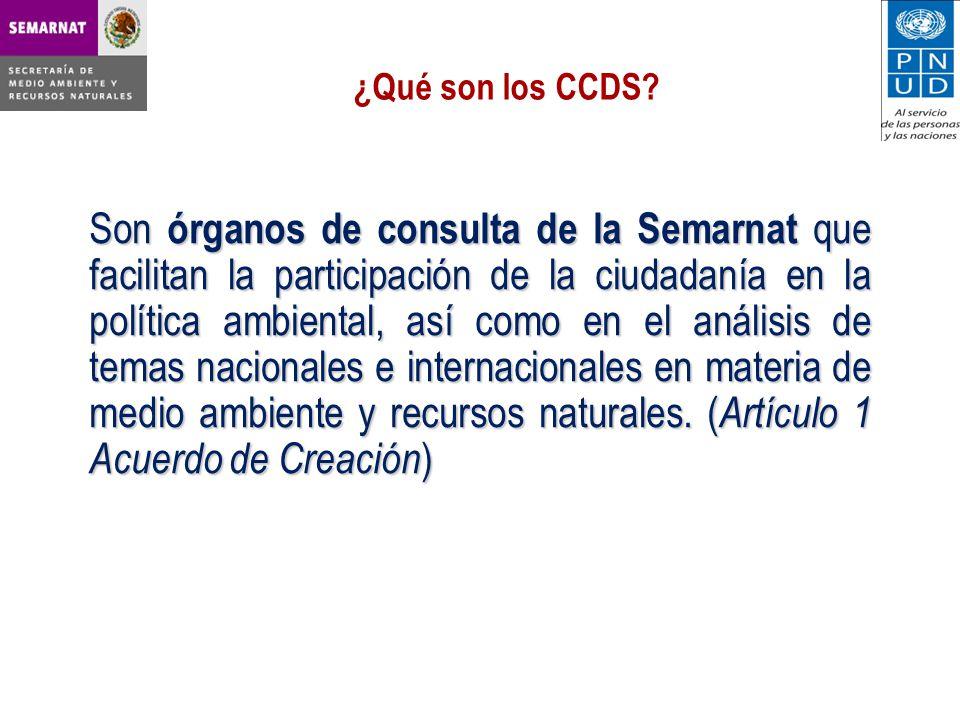¿Qué son los CCDS