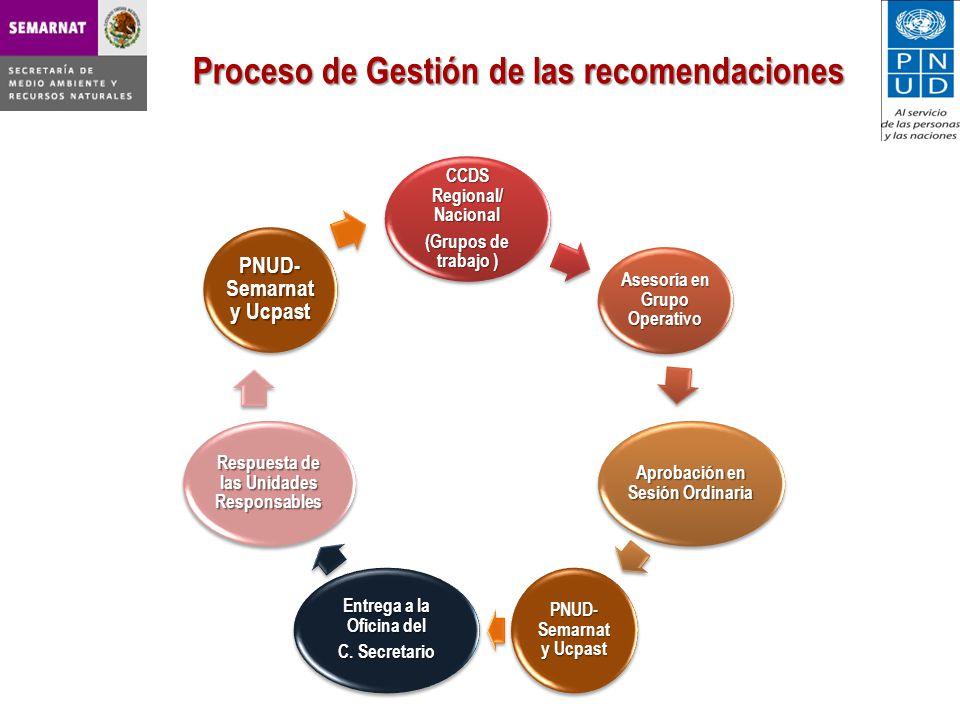 Proceso de Gestión de las recomendaciones