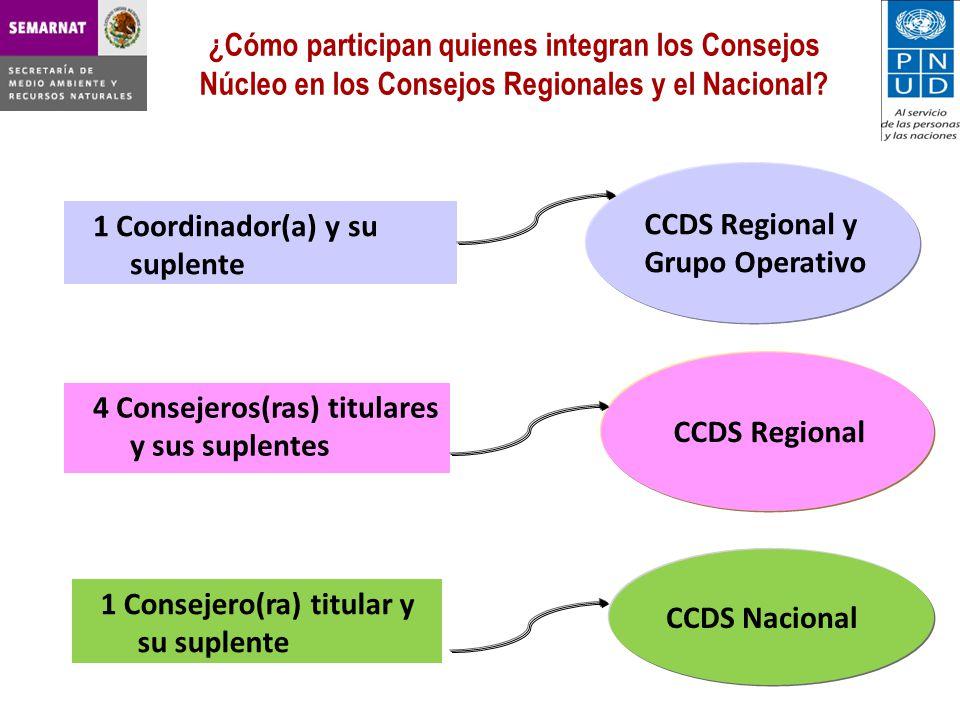 ¿Cómo participan quienes integran los Consejos Núcleo en los Consejos Regionales y el Nacional