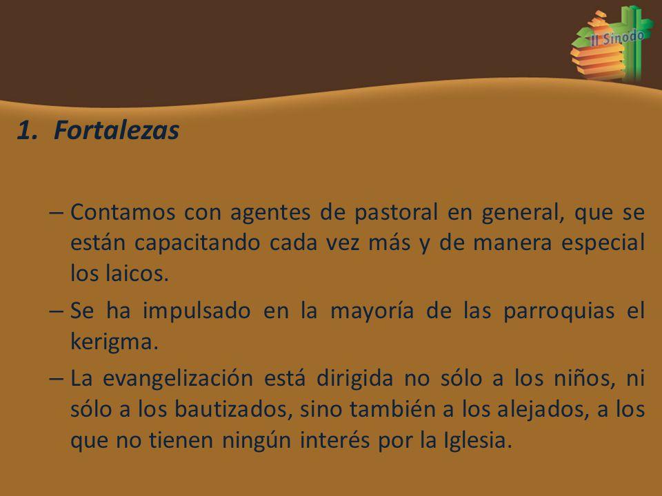 Fortalezas Contamos con agentes de pastoral en general, que se están capacitando cada vez más y de manera especial los laicos.