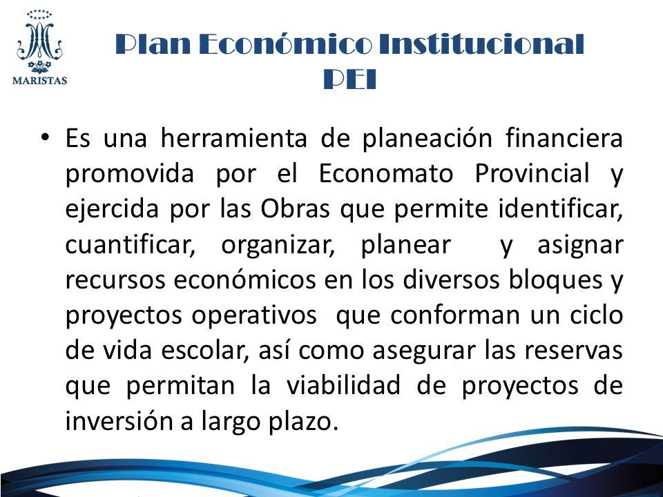 Plan Económico Institucional PEI