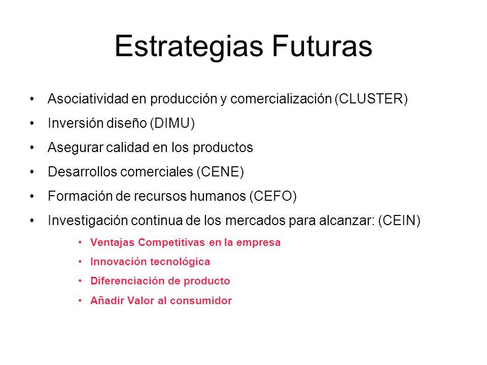 Estrategias Futuras Asociatividad en producción y comercialización (CLUSTER) Inversión diseño (DIMU)